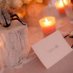 Event organizers that specialize in weddings, flowers and decor. Destination Wedding Planner, Wedding Coordinator, Intimate Weddings, Unique Weddings, Event Styling, Wedding Trends, Weddingideas, Event Planning, Wedding Decorations