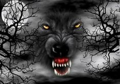 lobo gris g hc Werewolf Hunter, Werewolf Art, Beautiful Dark Art, Beautiful Wolves, Bark At The Moon, Native American Pictures, Wolf Wallpaper, Big Bad Wolf, Plant Art