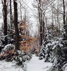 Pocono Lake Preserve, Pennsylvania