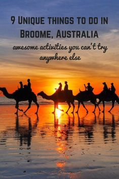 Broome itself is a unique town, so isolated and remote. Naturally, there are several unique things to do in Broome that you can't do anywhere else! Australia Travel Guide, Visit Australia, Australia Tours, Australia 2018, Coast Australia, Broome Australia, Stuff To Do, Things To Do, Largest Countries