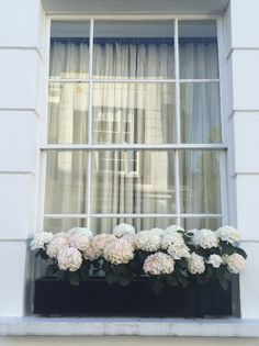 31 of the Best Window Boxes in London Photos | Architectural Digest