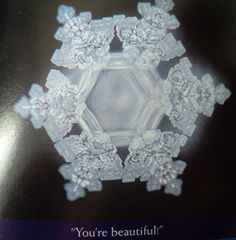 """Masaru Emoto is the world renowned Japanese researcher, lecturer and bestselling author behind a series of """"water crystal"""" research. He has photographed thousands of water crystals throughout his years of research after water was exposed to. Masaru Emoto Water, Water Experiments, Structured Water, Water Molecule, Aqua, You Are Beautiful, Sacred Geometry, Just In Case, Snowflakes"""