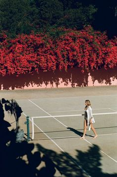 pink wall, red flowers & tennis court.