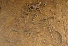 Mountain biker skeleton