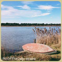 La #PicOfTheDay #turismoer di oggi arriva dal Parco Delta del Po in provincia di Ravenna: Piallassa della Baiona est ..che serenità!   Complimenti e grazie a @Trish O'Donnell