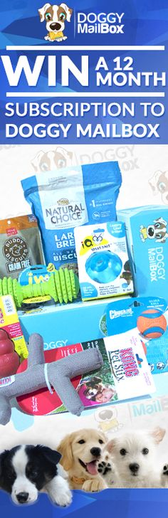Enter for your chance to win a 12 month subscription here -> http://doggymailbox.com/entercontest