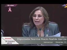 """MORENA:""""El Estado PONE, los INVERSIONISTAS COSECHAN"""""""