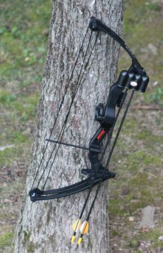 147fffbe191 8 Best Youth Compound Bow for Your Kid  2019