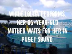 Don't buy tickets to any marine park or seaworld ever. - Google Search