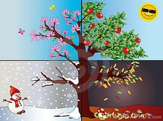 Four seasons. Illustration of tree representing the four seasons: spring, summer ,
