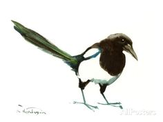Magpie Art by Suren Nersisyan - at AllPosters.com.au