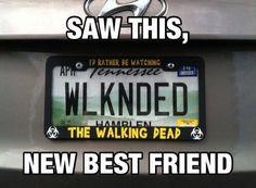 Trendy Ideas For Memes Best Friends Walking Dead Walking Dead Funny, Walking Dead Zombies, Fear The Walking Dead, Best Tv Shows, Best Shows Ever, Look Man, Dead Inside, Stuff And Thangs, Just In Case