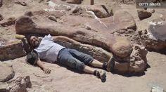 CNN.co.jp : アルゼンチンで巨大な恐竜の化石発見、世界最大級の可能性