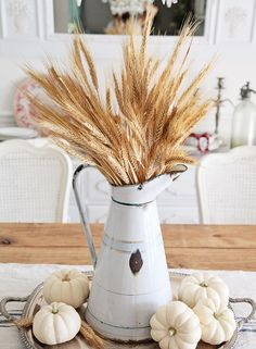 Simple enamelware pitcher + wheat and little pumpkins. Such a great fall…