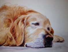 """""""The painting is by Melanie's mom, who owns a studio in Little Washington, NC, and who posts her work on her facebook page, Watercolours by Carol Mann.  I was so drawn to her pet portraits and how well she captures each animal's spirit (especially the labs!).  One of these paintings would make an incredible gift for the pet lover in your life!""""  From Bungalo Blue Interiors"""
