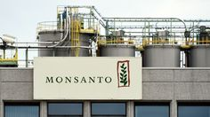 Bayer Agrees To Buy Monsanto For $66 Billion : The Two-Way : NPR