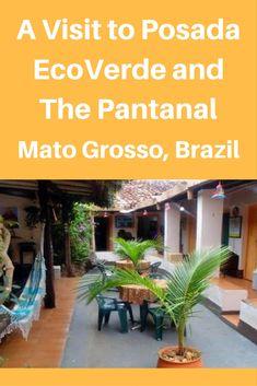 EcoVerde Hotel and Tours #Brazil #travel #Pantanal #horse riding #naturephotography #traveltips