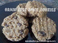 Grain Free Spice Cookies  http://sandisallergyfreerecipes.net/