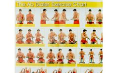 Ab Dialer Abdominal Exercise Workout System w/ 3 Weight Springs and Adjustable Resistance Plus Bonus DVD, | Multicityasseenontv.com  List Price: $49.90 Discount: $32.76 Sale Price: $17.14