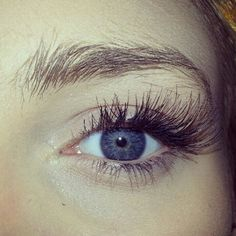 False individual eyelashes