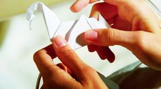 i looked up how to make a paper crane when i first started watching prison break!