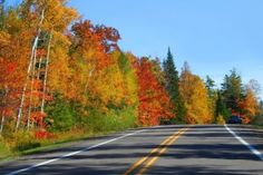With countless studio tours lined up for the fall, it's time to hit the highway. Check out our list of studio tours happening across Ontario this September.