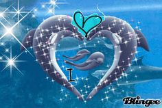 Here is two dolphins in a heart with four others, two babies, and two pod members. Description from blingee.com. I searched for this on bing.com/images