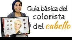 Esta guía básica del colorista de cabello te será de gan utilidad en tus trabajos diarios.