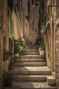 "wanderthewood: ""Korčula, Croatia by CPF Photography """
