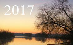 Was erwartet dich 2017 auf unser Garten- und Naturblog... View 2017...