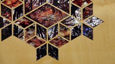 Divine Lights : Cubic Tessellations : Autumn Frost