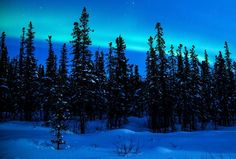 The northern lights and a full moon in Alaska