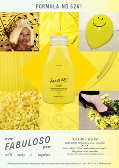 evo FABULOSO pro Formula No. 6261 *BIG BIRD YELLOW* Yellow Hair Color, Split Dyed Hair, Salon Services, Big Bird, Evo, Social Media Marketing, Hair Care, Conditioner, Creative