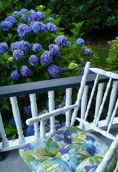 A blue garden