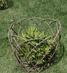 Plant supports - Plant supports is part of Willow garden Plant supports – - Garden Art, Garden Trellis, Garden Planning, Plant Supports, Garden Plant Supports, Garden Design, Garden Structures, Plants, Willow Garden