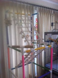 My friend Pat's bird gym Parrot Perch, Parrot Bird, Bird Perch, Diy Bird Toys, Bird Crafts, Diy Macaw Toys, Timneh African Grey, Bird Play Gym, Parrot Play Stand