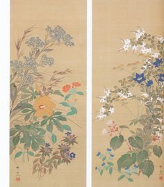 (Japan) Autumn flowers, a pair of Japanese hanging scrolls by Suzuki Kiitsu Japanese Art Styles, Japanese Patterns, Botanical Drawings, Botanical Art, Art And Illustration, Art Chinois, Plant Painting, Art Japonais, Japanese Flowers