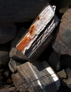 from: Rock my World. Photo: Åse Margrethe Hansen
