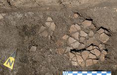 Ziua 3: Fragmentele vasului 1 descoperit in situ.