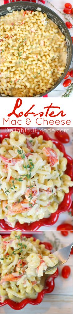 Comfort food at its best! With a delicious three-cheese sauce, big chunks of fresh lobster, and al dente pasta, this Lobster Mac and Cheese is the perfect dinner any night of the week! (shrimp mac and cheese) Cheesy Mac And Cheese, Lobster Mac And Cheese, Macaroni Cheese, Mac Cheese, Lobster Recipes, Seafood Recipes, Pasta Recipes, Cheese Recipes, Fish Recipes