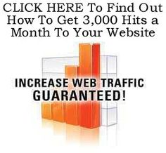 How to get website hits http://fiverr.com/chivvy/show-you-how-to-get-3000-hits-a-month-to-your-website