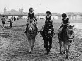 Donkey Rides in Blackpool - 1970s Photographic Print by Shirley Baker
