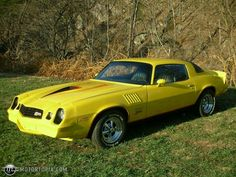1974 Camaro. Ours was yellow, no striping, with Houndstooth interior. I loved this car! This baby had balls!!