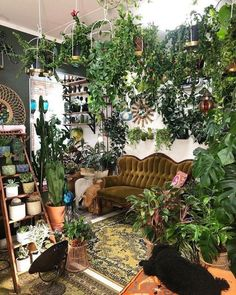 Gregarious spoke simple bohemian home decor You are in the right place about hippie home decor kitch Room With Plants, House Plants Decor, Plant Decor, Plant Rooms, Deco Retro, Interior Plants, Room Interior, Aesthetic Room Decor, Dream Apartment