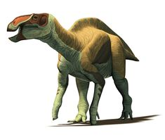Mexican Dinosaurs, Quo Magazine August 2013. Huehuecanauthlus tiquichensis, hadrosaurine dinosaur from the Late Cretaceous of Michoacan State. Art by Román García Mora.