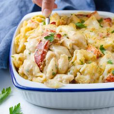 A savory seafood béchamel chunks of lobster al dente shell  Mein Blog: Alles rund um die Themen Genuss & Geschmack  Kochen Backen Braten Vorspeisen Hauptgerichte und Desserts # Hashtag