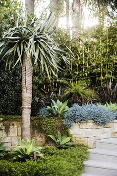 This impressive garden makeover cleverly links the terrace and pool area with an inviting entertaining zone. Pool Landscape Design, Garden Design, Landscape Architecture, Landscape Plans, Plant Design, Architecture Design, Sydney Gardens, Backyard Pool Landscaping, Tropical Landscaping