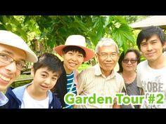 GARDEN TOUR #2 Dans le potager de mon père   Jardin familial juillet : courges framboises & piments - from #rosalys at www.rosalys.net - work licensed under Creative Commons Attribution-Noncommercial