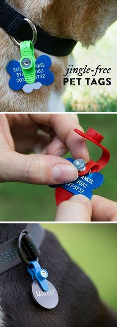 ID tags are important for your pets (especially if they ever get lost), but the jingle is just so annoying. FreezeTag is a durable pet tag silencer that's waterproof, resists odors, and stops that noise. Made in the USA, FreezeTag holds up to four tags an