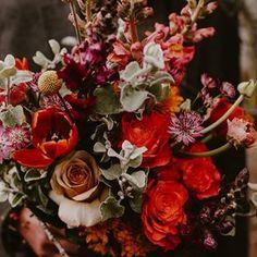 Bulb Flowers (@bulbflowers_ct) • Instagram photos and videos Happy Flowers, Bulb Flowers, Bouquets, Photo And Video, Rose, Videos, Plants, Photos, Instagram